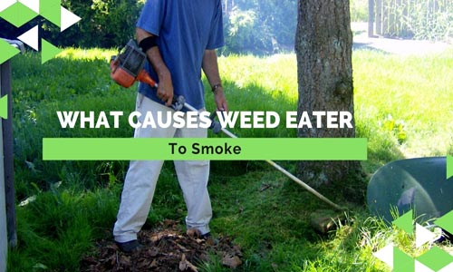 What Causes A Weed Eater To Smoke: (5 Reasons) | Fun In ...